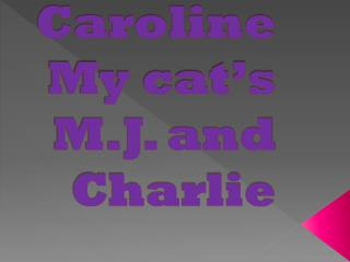 Caroline My cat's M.J. and Charlie
