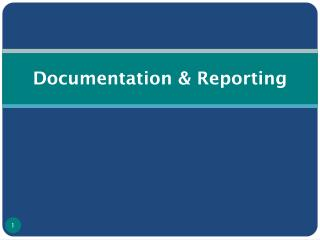 Documentation & Reporting