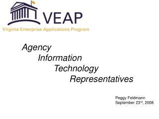 Agency Information Technology Representatives