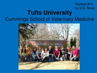 Tufts University Cummings School of Veterinary Medicine