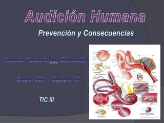 Audición Humana