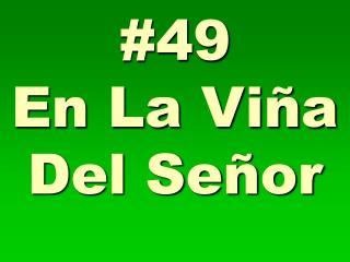 #49 En La Viña Del Señor