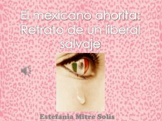 Estefania Mitre Solis