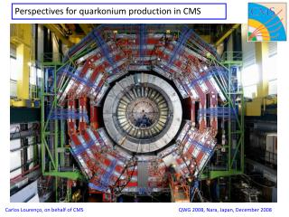 Perspectives for quarkonium production in CMS