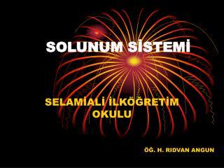 SOLUNUM S?STEM?
