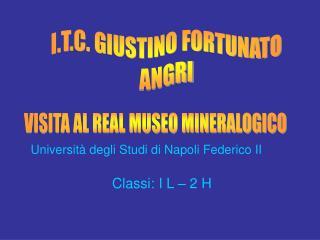 Università degli Studi di Napoli Federico II