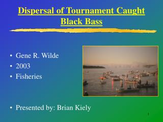 Dispersal of Tournament Caught Black Bass