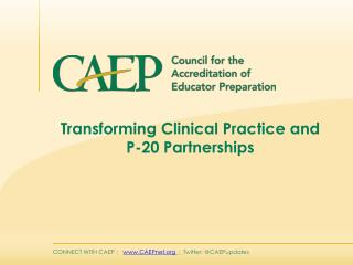 Transforming Clinical Practice and P-20 Partnerships