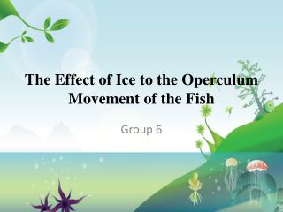 The Effect of Ice to the Operculum Movement of the Fish
