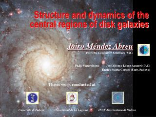 Structure and dynamics of the central regions of disk galaxies