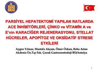 Aygen Yılmaz, Mustafa Akçam, Ömer Özkan, Reha Artan