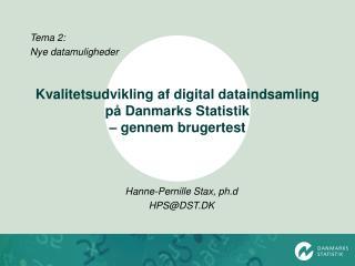 Kvalitetsudvikling af digital dataindsamling på Danmarks Statistik  – gennem brugertest
