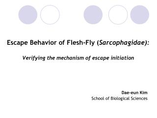 Escape Behavior of Flesh-Fly ( Sarcophagidae): Verifying the mechanism of escape initiation