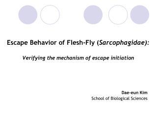 Escape Behavior of Flesh-Fly ( Sarcophagidae): Verifying the mechanism of escape initiation