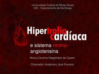 Universidade Federal de Minas Gerais ICB – Departamento de Morfologia