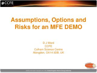 Assumptions, Options and Risks for an MFE DEMO