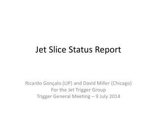 Jet Slice Status Report
