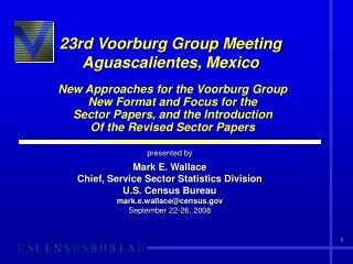 23rd Voorburg Group Meeting  Aguascalientes, Mexico  New Approaches for the Voorburg Group