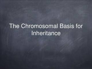 The Chromosomal Basis for Inheritance