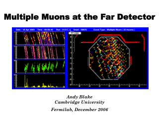 Multiple Muons at the Far Detector