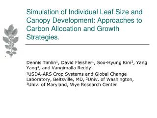 Simulation of Individual Leaf Size and Canopy Development: Approaches to Carbon Allocation and Growth Strategies.