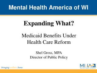 Mental Health America of WI