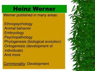 Heinz Werner