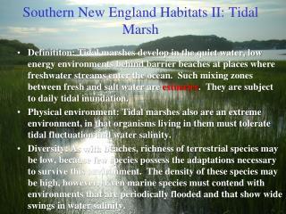 Southern New England Habitats II: Tidal Marsh