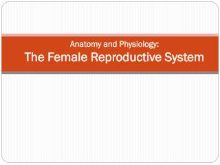 Anatomy and Physiology:  The Female Reproductive System
