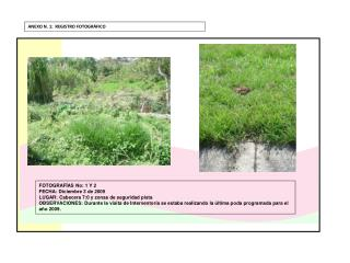 FOTOGRAFÍAS  No : 1 Y 2 FECHA : Diciembre 3 de 2009