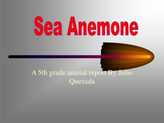 A 5th grade animal report By Julio Quezada