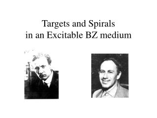 Targets and Spirals in an Excitable BZ medium