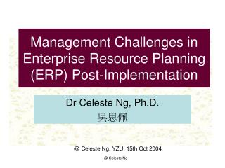 Management Challenges in Enterprise Resource Planning (ERP) Post-Implementation