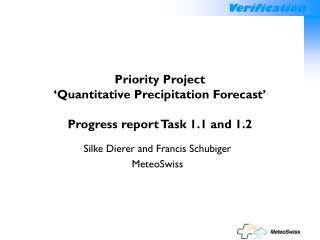 Priority Project  'Quantitative Precipitation Forecast' Progress report Task 1.1 and 1.2