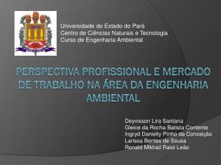 PERSPECTIVA PROFISSIONAL E MERCADO DE TRABALHO NA ÁREA DA ENGENHARIA AMBIENTAL