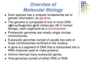 Overview of  Molecular Biology
