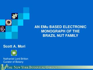 AN EMu BASED ELECTRONIC MONOGRAPH OF THE BRAZIL NUT FAMILY