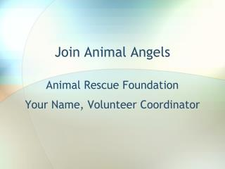 Join Animal Angels