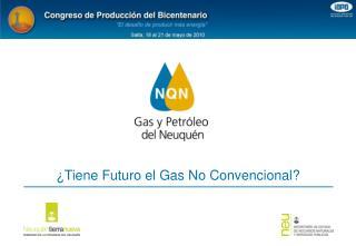 ¿Tiene Futuro el Gas No Convencional?