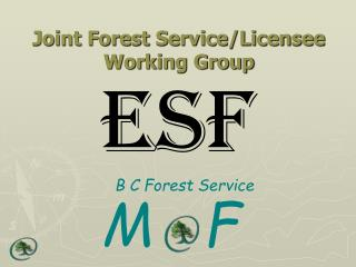 Joint Forest Service/Licensee Working Group