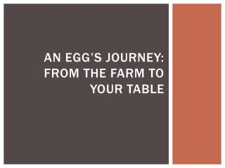 An egg's journey: From the farm to your table