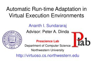 Automatic Run-time Adaptation in Virtual Execution Environments