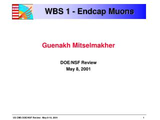 WBS 1 - Endcap Muons