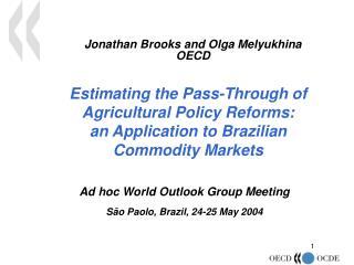 Jonathan Brooks and Olga Melyukhina  OECD