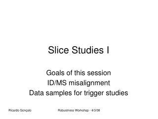 Slice Studies I