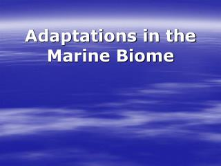 Adaptations in the Marine Biome