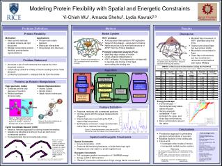 Modeling Protein Flexibility with Spatial and Energetic Constraints