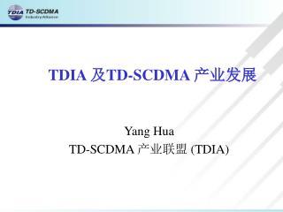 TDIA  及 TD-SCDMA  产业发展