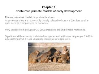 Chapter 3 Nonhuman primate models of early development