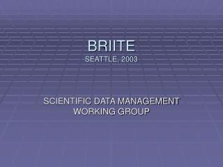 BRIITE SEATTLE, 2003